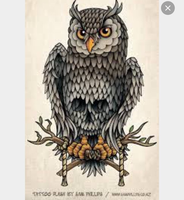 I thought this was hella cool when I first saw it cause I love owls and skulls so both together peaked my interest.