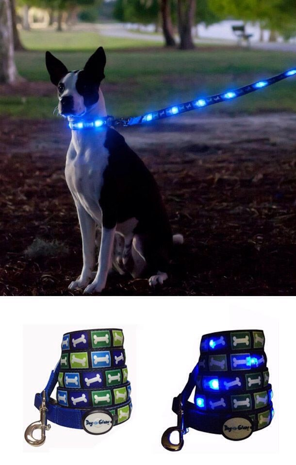 2. Now you can walk your dog in the dark and not get hit by a car.Dog-e-Glow Leash Collar $23.99