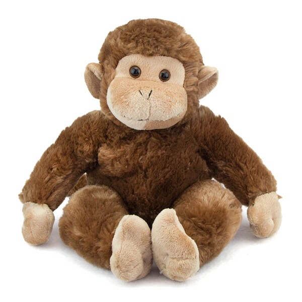 A stuffed animal! Need a special friend to help you sleep? You can bring that special friend!