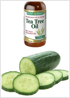 what you'll need ... -something to store this -cucumber -tea tree oil -blender  ♻️blend some drops of tea tree oil and half cucumber and pourinto your container and use with a cotton ball or pad to remove your makeup🍃