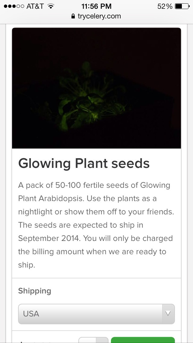 "Up and coming... Bioengineered glow in the dark plants open a whole new meaning to the term ""night lights."" Will this be the next alternative to indoor lighting? Au naturel!"