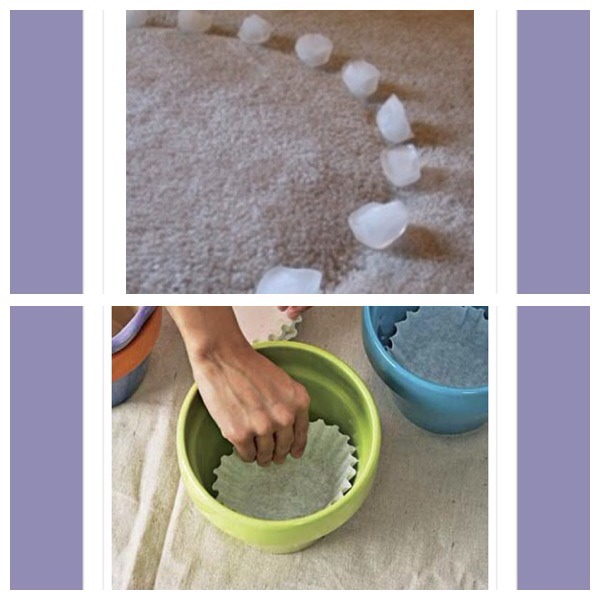 9. Use ice cubes to lift out indentations made by furniture on your carpets 10. Prevent soil from escaping through the holes in the base of flowerpots by lining with large muffin cases