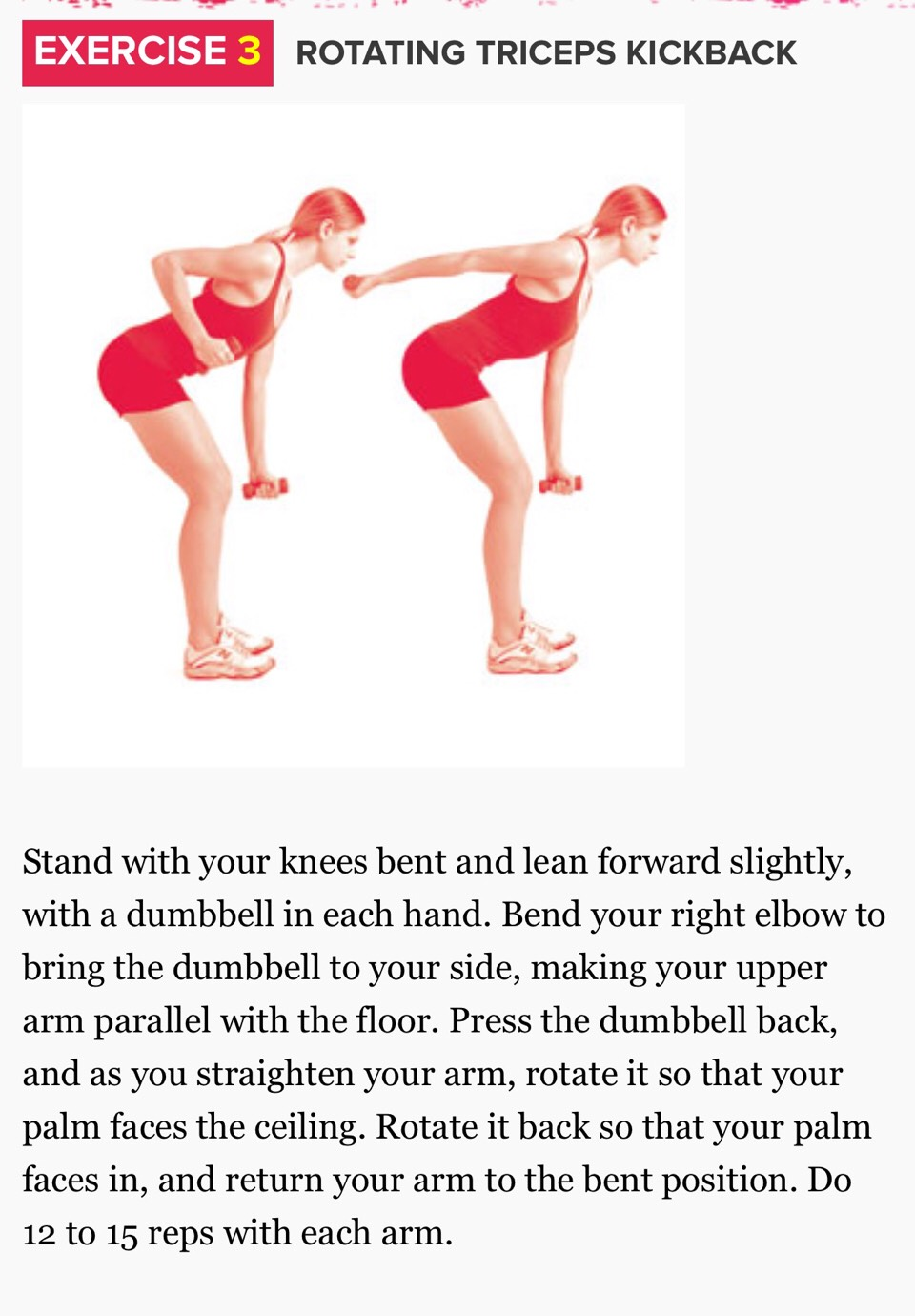 The (15 Minute) Bye-Bye Arm Jiggle Workout The (15 Minute) Bye-Bye Arm Jiggle Workout new photo