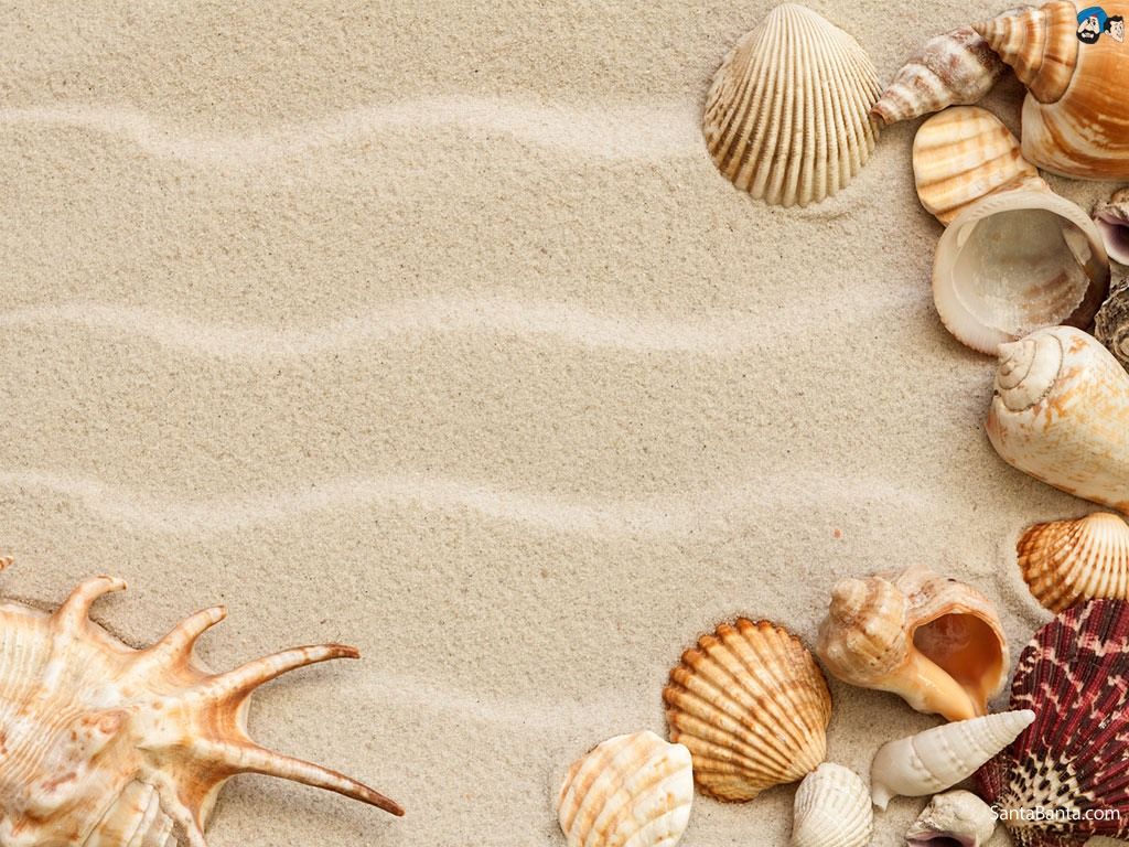 Put sand in the tank. You should put enough sand so that a hermit crab could fully cover itself with it. Place decorations in the tank, like rocks and miniature logs. Hermit crabs love to hide,so make hiding places. Also do not block the corners of the tank because they love to bury themselves there
