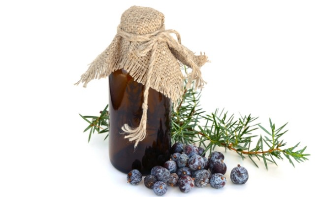 Juniper Berry Essential Oilhelps promote circulation, and also aids in removing toxins from the body whichis why it is often recommended for cellulite. It is also a natural astringent, tightening the skin and keeping it youthful.