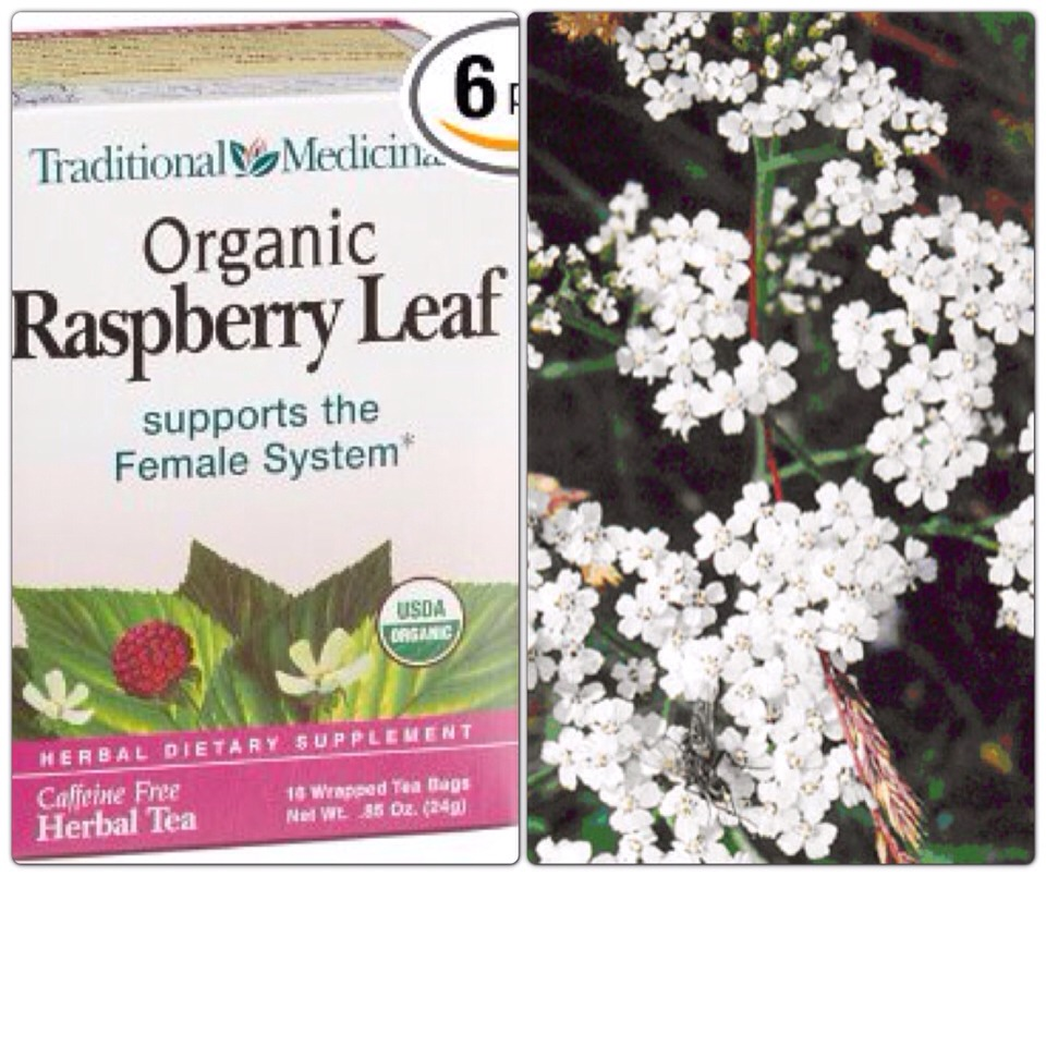 Red raspberry leaves tone the uterus and also help prevent menstrual cramps. This herb needs to be taken consistently over a long period of time to get this benefit. If menstrual flow is heavy, red raspberry leaves will help control it. Yarrow is also instrumental in reducing excessive menstrual flo