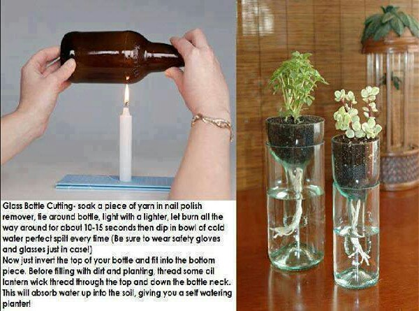 transform your bottles and put them to use