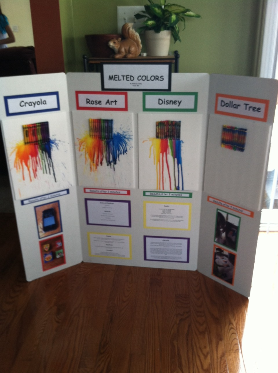 Fashion science fair project ideas