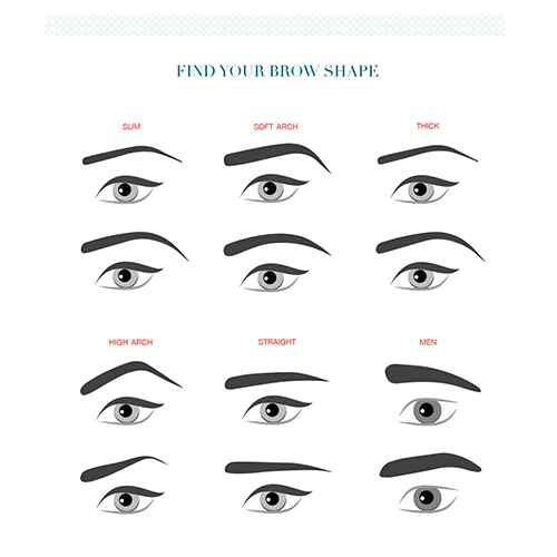 2. Figure out the brow shape you want. Thin or thick? Arched or straight?