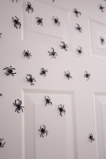 Glue tiny magnets to plastic spiders. This will give any metal door a freaky look for Halloween.