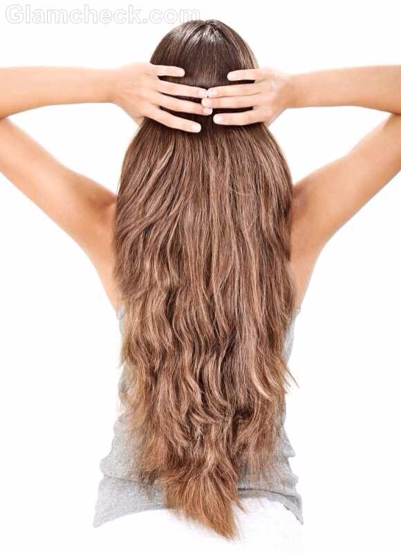 There are 3 main parts to growing and maintaining healthy hair. They are 1. hydration 2. stimulation 3. inside health
