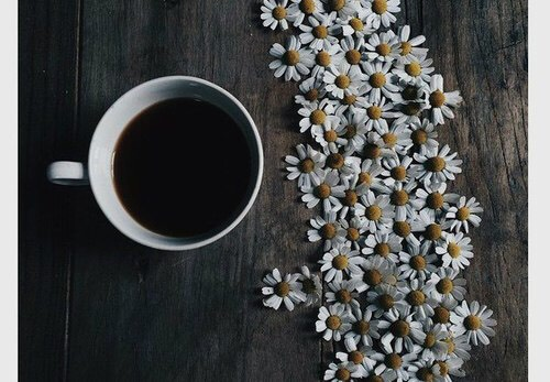 Use chamomile tea! This method is completely all-natural and just as effective on hairas a store bought hair dye. For instructions tap the link:  http://www.diybeautytutorials.com/2013/08/diy-lighten-your-hair-naturally-in-1.html