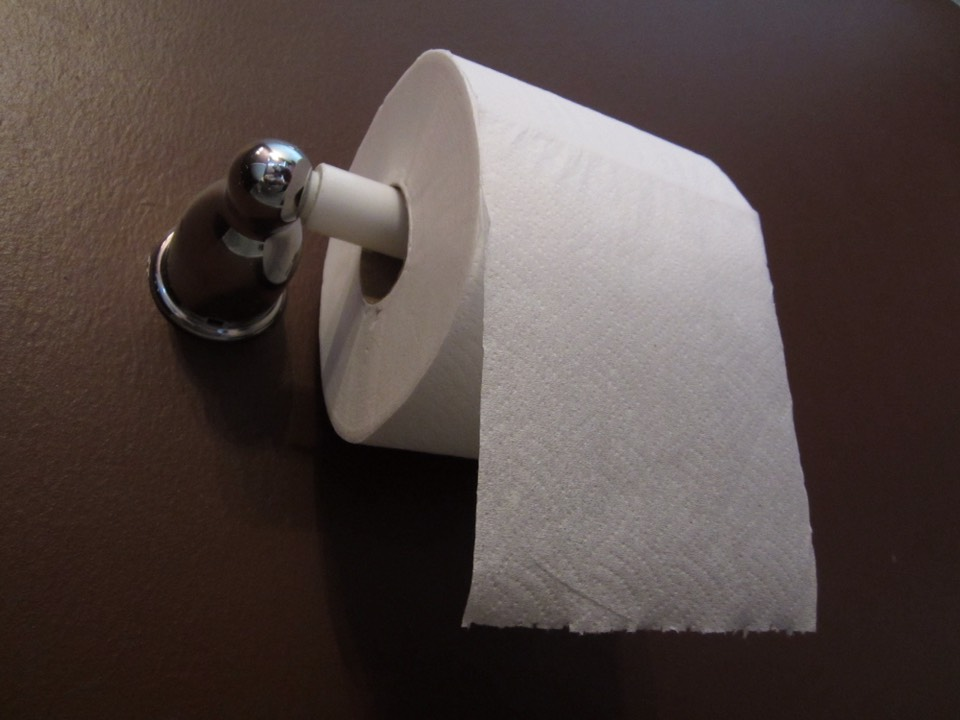 Toilet Paper ((you won't need a whole roll))