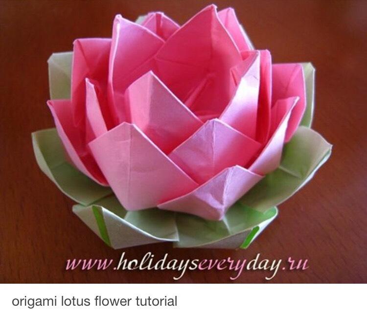 Origami Lotus Flower Tutorial By Roselyn Bhowmik Musely