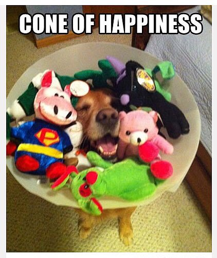 Cone of happiness.