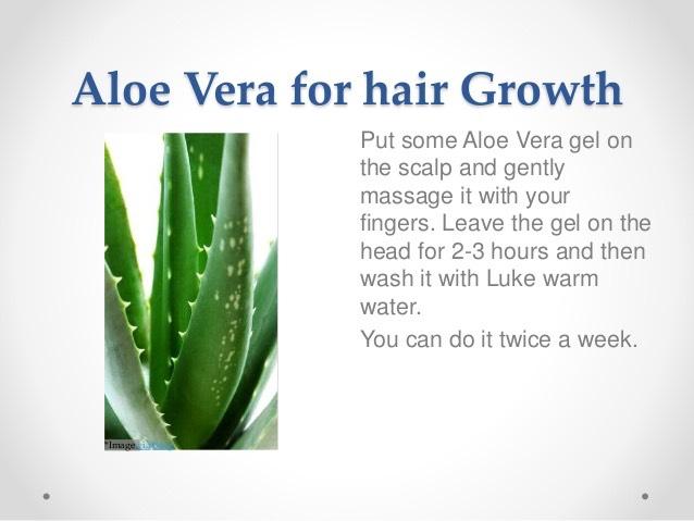 10 Best Remedies Using Aloe Vera By Nunita Nice Musely
