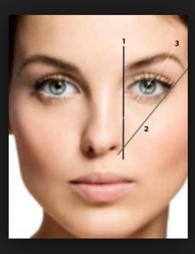 1 is were eyebrow starts 2 is were eyebrow end 3 is the arch of the eyebrow