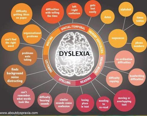 the inside of a dyslexic brain and the different types you may have