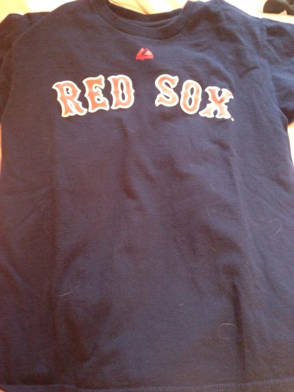 Go RedSoxs
