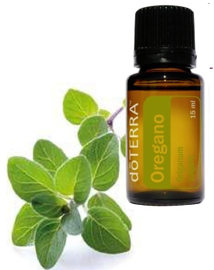 Try oregan oil. Mix two drops of oregano oil into a 12-oz. glass of water and gargle twice a day. This remedy will reduce throat inflammation and pain within 48 hours. It also strengthens cells lining the throat boosting their resistance to viruses.