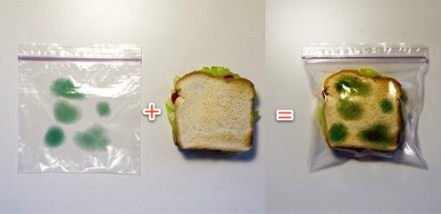 Anti-Theft Lunch Bag. Put a little green marker on the outside of the bag, let it dry then put your sandwich in. I guarantee no one is touching that bad boy!