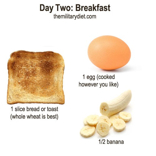 Substitutes  Bread: 1/8 c sunflower seeds, 1/2 c whole grain cereal, 1/2 high protein bar, 1 tortilla or 2 rice cakes   Eggs: 1 cup milk, 1 chicken wing, 1/4 cup seeds or nuts, or 2 slices bacon  Banana: 2 kiwis, 1 cup of papaya, 2 apricots, plums, grapes or apple sauce