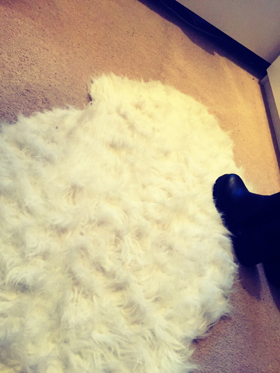 Sheep skin rug Real or not a rug or carpet will completely Chang the look of your room to create a stylish and warm feeling throughout your space, can be caught cheap or not so much but will always improve that room🐑