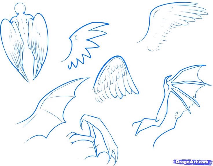 These are ways to draw anime wings.