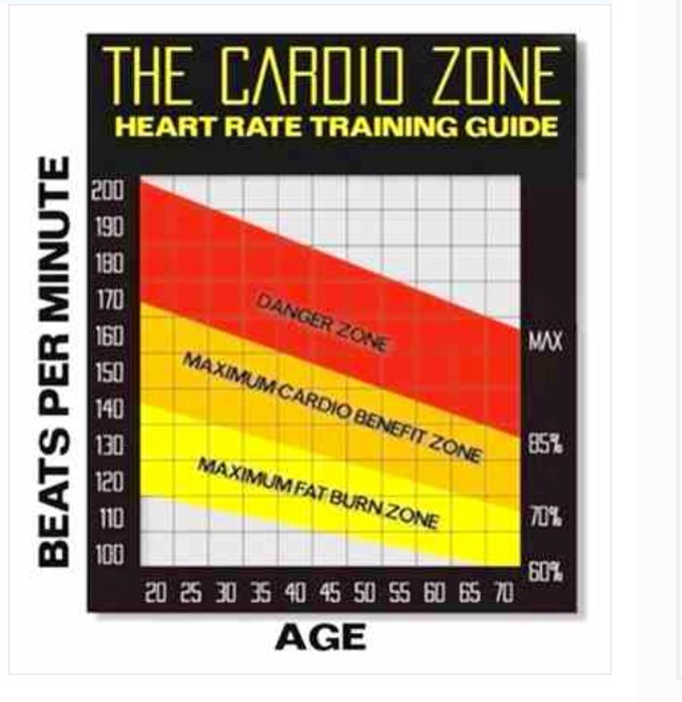 Work in your fat burn zone and not cardio :)