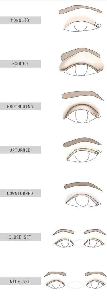 Hooded eyes have an extra layer of skin that droops over the crease, which makes the lid appear smaller. Monolid eyes, however, have a less defined brow bon