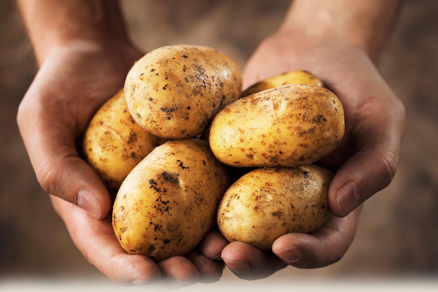You need potatoes