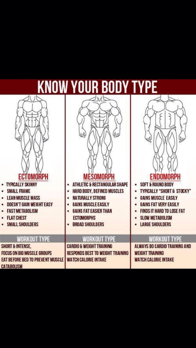 Know Your Body Type Will Help You Lose Weight: The Right
