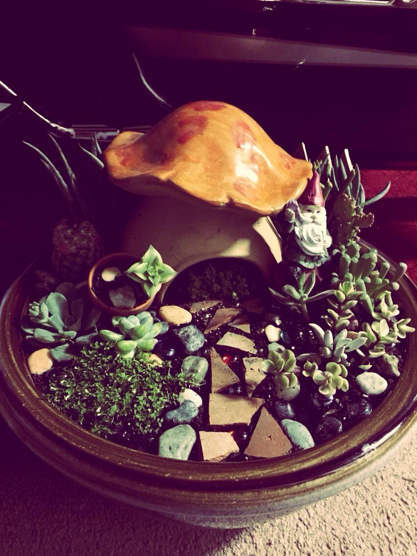 Little gnome mushroom house garden