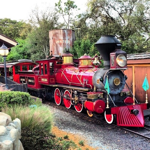 Walt Disney World Railroad Not only is this a fun ride, it's also a convenient way to get around the park. It starts off on Main Street every morning and makes continuous rounds also stopping in Frontierland, Fantasyland  and Main Street.  Height: Any FP+: No
