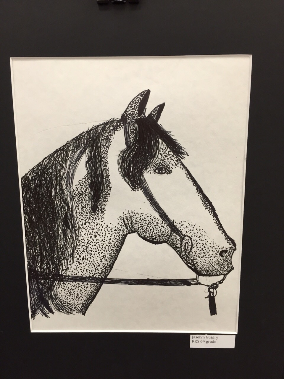 I made this in talented art I searched up a pic of a horse and tried the best I can. In class I was learning how to used dots to make a shadow.