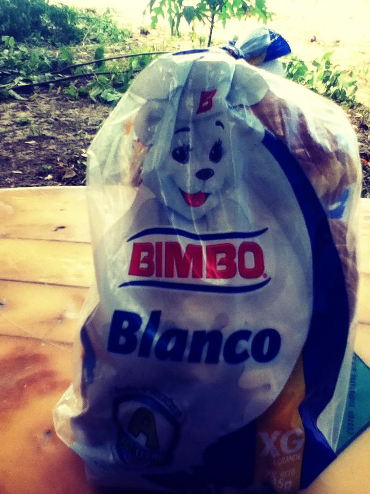 I use bimbo white bread bug I say u could use any type of bread