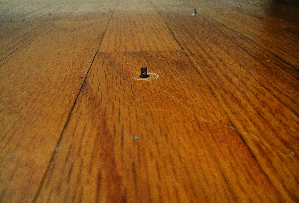 Squeaky floorboards: sprinkle some baby powder onto the floor and sweep it into the cracks. It should help with the noise.