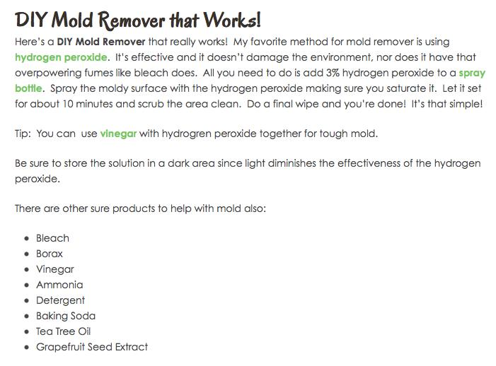 http://therepowoman.com/diy-mold-remover-works/#_a5y_p=995499