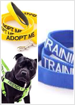 5.Color coded leashes $19.99 Not all dogs are friendly and you don't want to be constantly reminding strangers to not pet your dog on the head. Warn them by putting the appropriate leash on