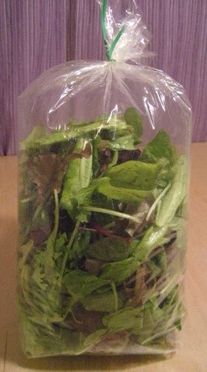 Also great for those like me who own a bearded dragon and a rabbit (or any other animal for that matter!) that I feed fresh greens to regularly so, this is a money saver for sure! 😊👍