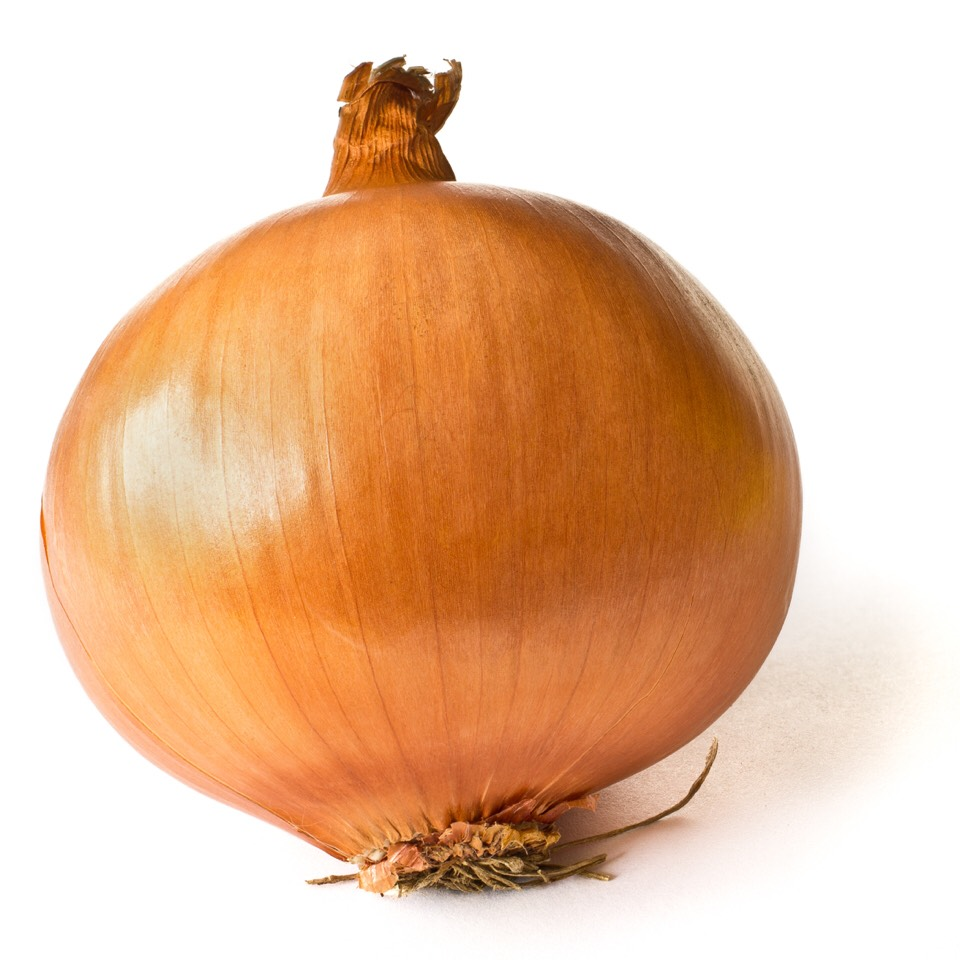 Do you have an ear ache? Cut an onion in half wrap it in aluminum foil toss it in the oven for 30 minutes at 350.  Once it's done take it out {with caution} let it cool just to the point where it doesn't burn wrap in a paper towel and place the cut side to your ear - as hot as you can stand it