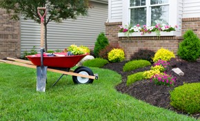 Flowers are the easiest, fastest way to improve the look of your front yard. Just a few cheery pots of brightly colored flowers will improve the look of your home significantly.