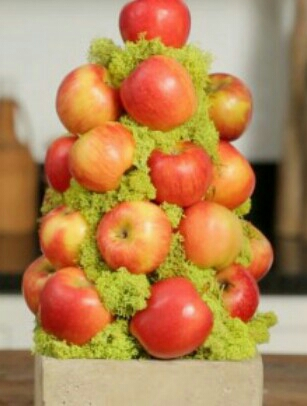 Apple topiary hint use one tooth pick or hot glue to attach the apples to a foam cone making it make the fruit stay  fresh longer this also makes it easier for your little ones to grab and go....
