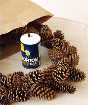 Salt as Wreath Duster Place a wreath of pinecones or faux evergreen in a paper bag with a 1/4 cup of salt. Fold the top of the bag over and gently shake.
