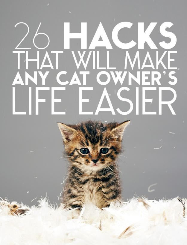 Show some more love for your cats with these hacks.