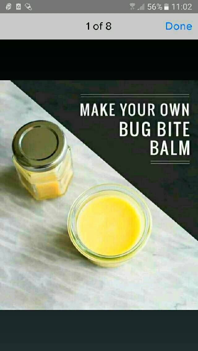 homemade bug bit balm