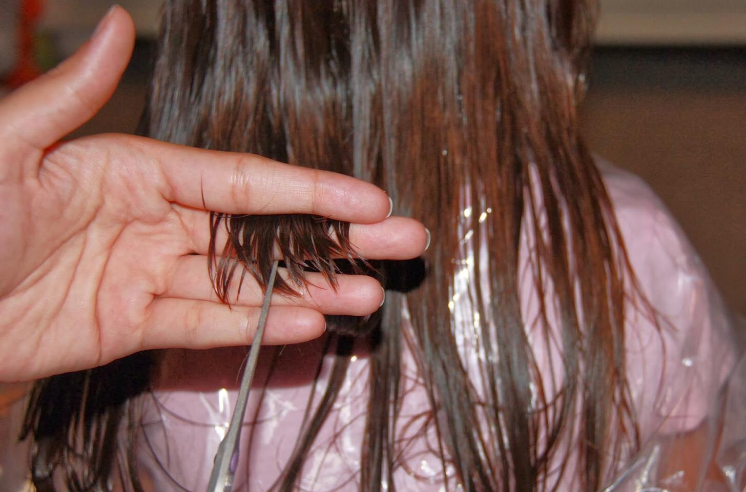 How to make damaged hair grow back