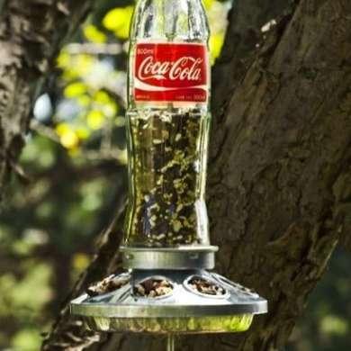 Coke Bottle Bird Feeder