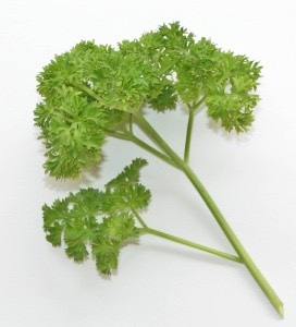 Sprinkle parsley onto your dogs food to freshen their stinky, smelly breath. No one wants to smell that!