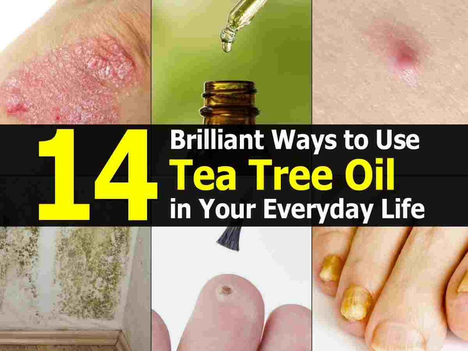 Tea tree oil is a very unique oil in that it contains a wide array of properties for helping with many ailments. Whether you are in pain or your skin is acting up, this oil can help. Learning about the uses is sure to convince you to grab a bottle for your medicine cabinet today.